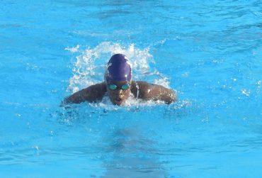 black-swimmer-370x251.jpg