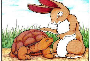 Tortoise-and-Rabbit01-370x251.jpg