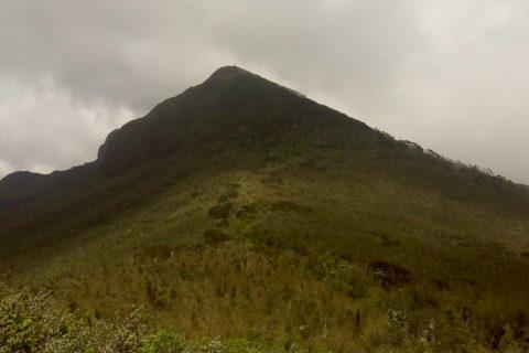 Mwangi08