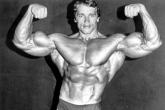 Arnold Schwarzenegger 01