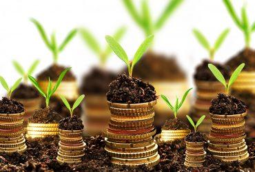 Investment1-370x251.jpg